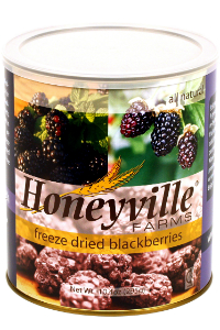 Freeze Dried Blackberries LARGE CAN